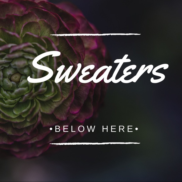 Sweaters - ⬇️ ALL SWEATERS BELOW THIS ⬇️